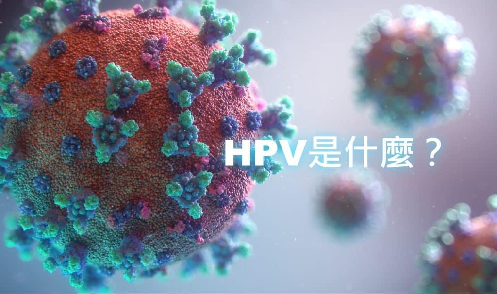 hpv是什麼?是你不敢面對,還是真的不知道?仲以為感染hpv是女性的專利,hpv男性也有機會感染!! banner Virus 01