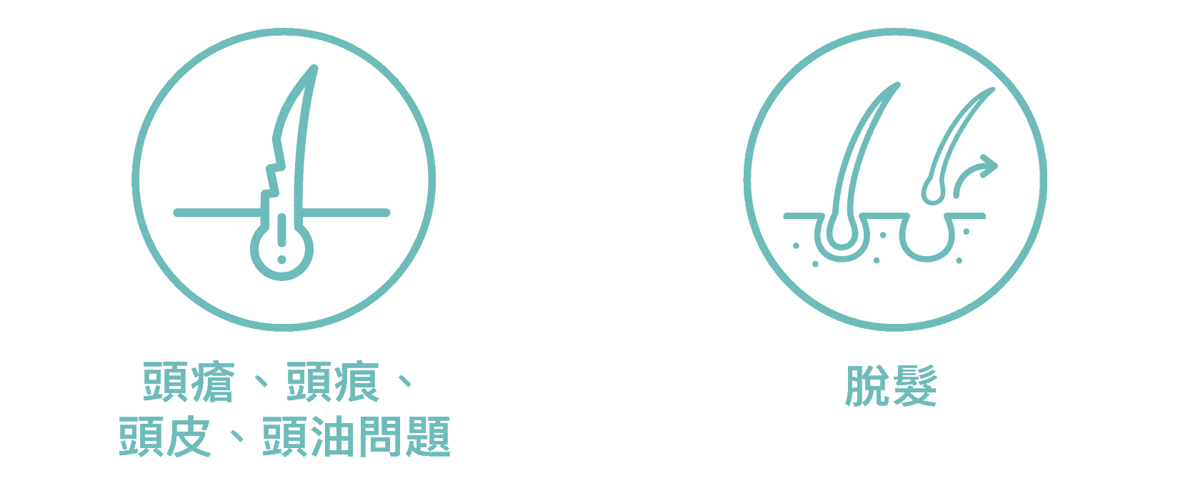 產後脫髮治療 icon1 12 1