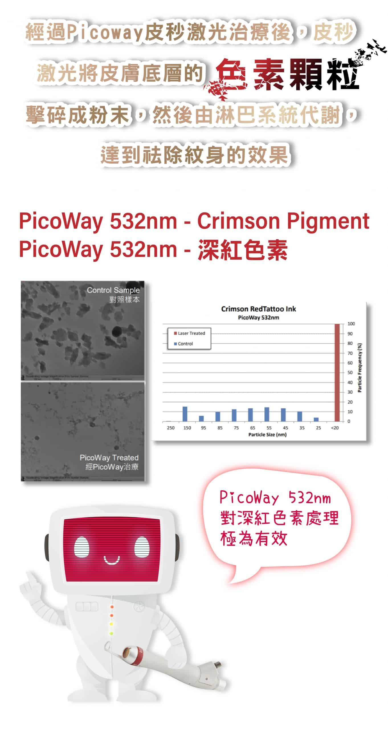Picoway_tattoo Pico tattoo m 37 1 scaled